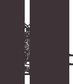 Filtración y cocción
